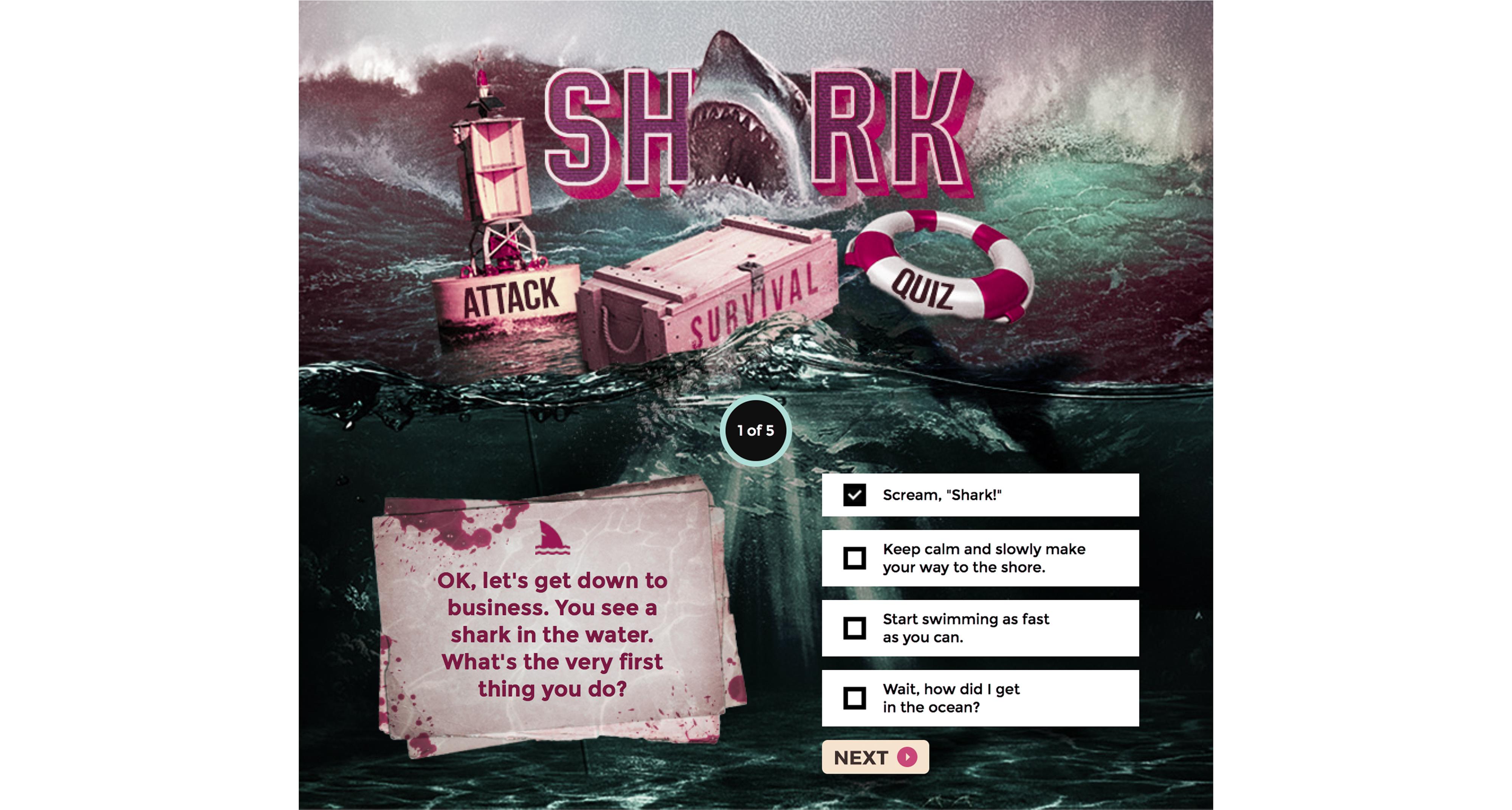 shark_q1